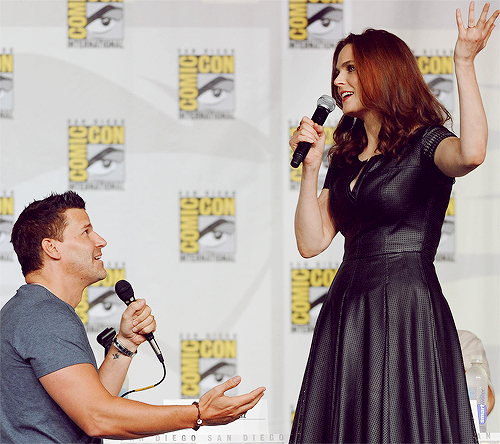 Bones wallpaper called David proposing to Emily at Comic Con 2013