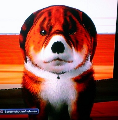 Dog-Tiger) PS3