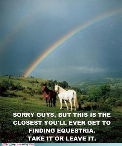 Epic poney pics :3
