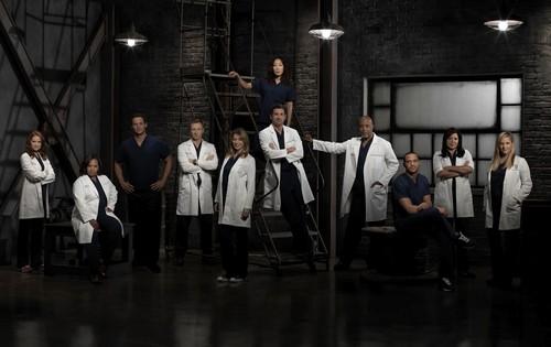 Grey's cast s9