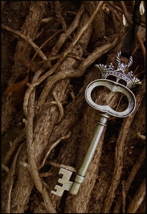 Key fantasy photo 35079573 fanpop for Fairy door with key