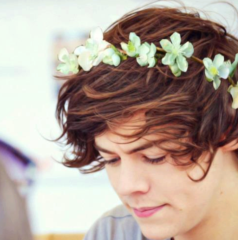 One Direction wallpaper possibly with a bouquet and a camellia titled Larry <3