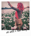 Neon HITCH tumblr- Pink Fields  - neon-hitch photo