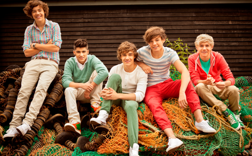 sshannahmontana wallpaper called One Direction
