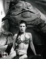 Rare Slave Leia immagini