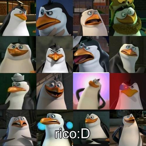Rico!!:D