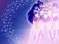 Sailor Moon - sailor-moon wallpaper