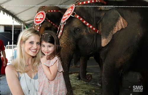 Sarah and 샬럿, 샬 롯 attend Ringling Bros. and Barnum & Bailey Circus