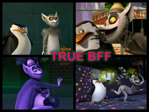 Penguins of Madagascar karatasi la kupamba ukuta probably containing anime entitled Skipper X Julien true BFF