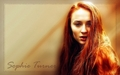 Sophie Turner - sophie-turner wallpaper