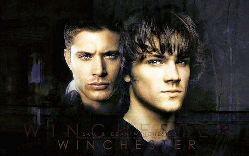 Supernatural wallpaper containing a portrait titled Supernatural ♥