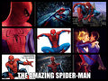 The Amazing Spider-Man - spider-man fan art