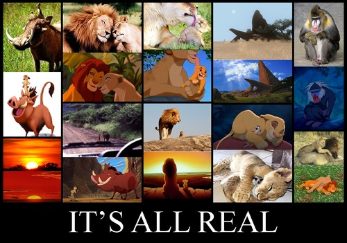 o rei leão wallpaper probably containing animê called The Lion King Is Real