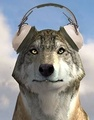 Wolf wearing headphones image
