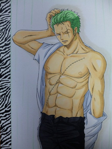 One Piece karatasi la kupamba ukuta probably containing anime called Zoro Sexy Back