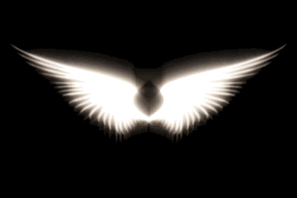 angel wings black background - photo #39