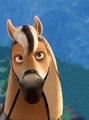 hans horse