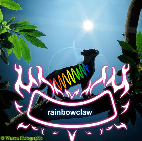 made up rainbowclaw