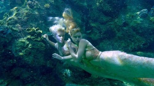 Meerjungfrauen hiding