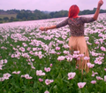 neon-hitch-pink-fields - neon-hitch photo