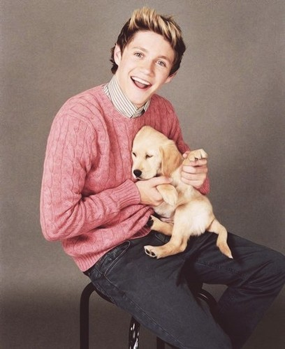 niall and doggy