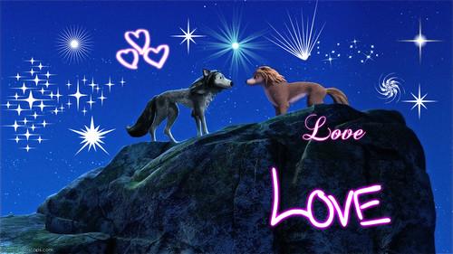 sparkling tình yêu