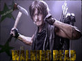 ★ Daryl ☆  - the-walking-dead wallpaper