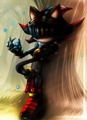 .:Sir Lancelot:. - shadow-the-hedgehog photo