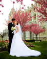 ♥ ♥ Wedding Kisses ♥ ♥ - kissing photo