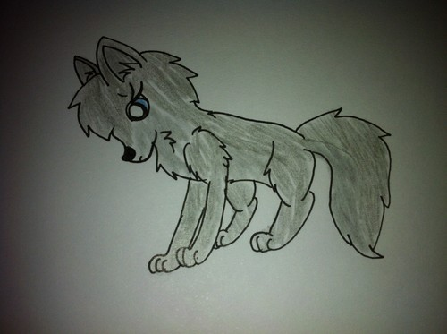 Bluefire as a pup