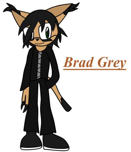 Brad Brier Grey