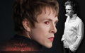 Charlie Bewley as Demetri... My New picha hariri kwa Me as Wallpaper, Adobe Photoshop cs3.