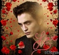 Edward Cullen xxx - edward-cullen photo
