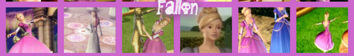 Fallon banner