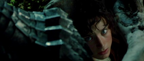 Frodo - Fellowship of the Ring
