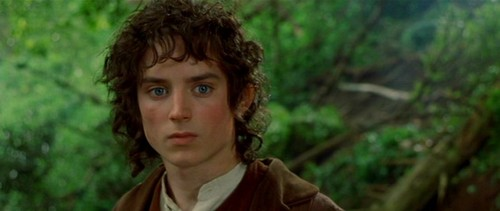 Frodo - Fellowship of the Ring