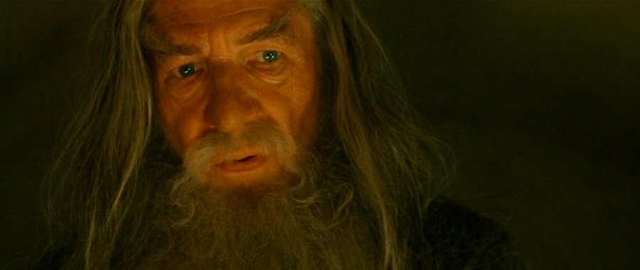 Gandalf the Grey - Fellowship of the Ring