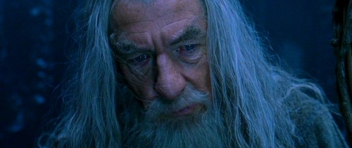 Gandalf the Grey - Fellowship of the Ring - gandalf Photo