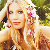 Gwyneth Paltrow iconos