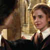 Harry and Hermione photo containing a bearskin called Harmony