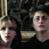 Harry and Hermione photo with a portrait called Harmony in POA