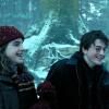 Гарри и Гермиона фото called Harmony in POA