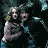 Harry and Hermione photo titled Harmony in POA