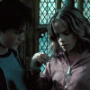 Harry and Hermione photo probably containing a chainlink fence titled Harmony in POA