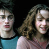 Harry and Hermione photo containing a portrait titled Harmony in POA