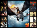 How To Train Your Dragon  - how-to-train-your-dragon fan art