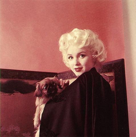 Marilyn Фан Art