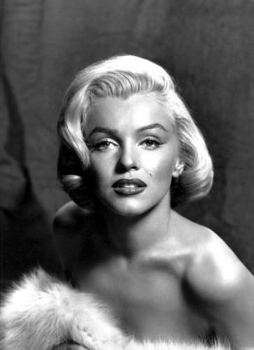 Marilyn 粉丝 Art