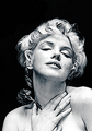 Marilyn Fan Art  - marilyn-monroe fan art