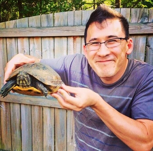 Markiplier karatasi la kupamba ukuta containing a terrapin, a western box turtle, and a snapping kobe, kasa entitled Markiplier